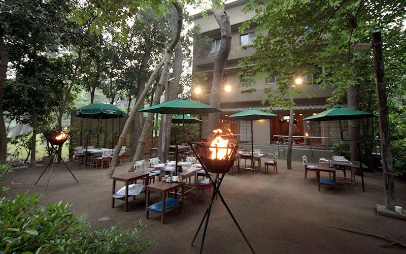 中庭…松林の中でお食事(4月-10月)