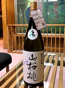 山桃桜(ゆすら)大吟/友部